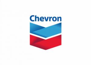 chevron-souvenirminiatur.png